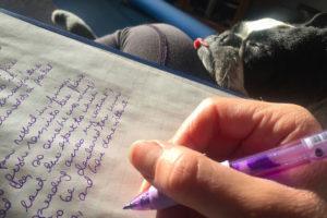 筆記体のノート